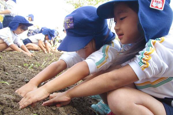 収穫祭_01