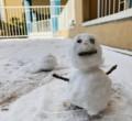 【全学年】雪遊びの様子